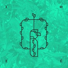 Fasten your nestbelts, 2017 is about to take off! FOLÉ Identity – A NEST SO NEAT AND EXQUISITE, WHERE CUISINE PASSION CONVEYS INTO AN #branding #leaf #graphicdesign #envision #bird #prishtina #dodo #identity #fole #clleanc #logo #extinct #artdirection