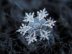 Płatki śniegu fotografowane domowym sposobem. #photo #snowflake #zoom