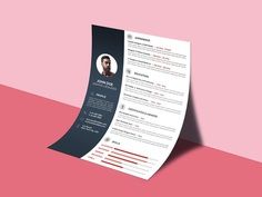 Free Professional CV/Resume Template for Job Seeker