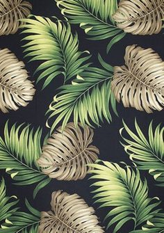 Graphic design( Monstera Black , photography by barkclothhawaii [source], via thevuas) #design
