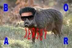 tumblr_m1z3s44Wbn1royrwzo1_1280.jpg 720×480 pixels #design #graphic #jersey #boar