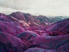 Aerochrome photographs of the Congo by Richard Mosse