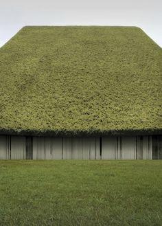 PHILIPP SCHAERER BILDBAUTEN #renderings #roofs #architecture #vegetation #green