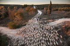 Atkins CIWEM Environmental Photographer Of The Year 2016 Shortlist