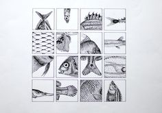 Celine Deboudard - Pencil microdot #illustration #grid #fish #drawing #sketch #ink #squares #animal #sea life #ocean #nature #black and whit
