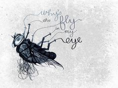 492 - Six Word Story Every Day #six #word #illustration #fly #story #typography