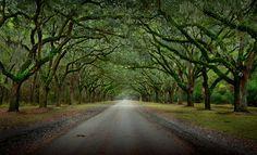 Landscape Photography by Michael Woloszynowicz