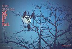 The Moon Rising #blue #sky #birds #winter #tree #moon #dusk #cold #typo