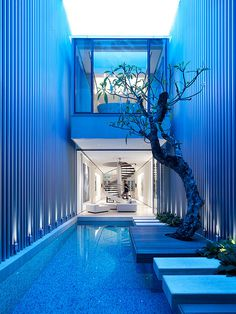 CJWHO ™ (55 Blair Road / Ong #ong #tree #design #interiors #pool #photography #architecture #singapore #luxury