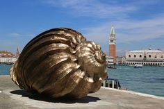 marc quinn at the cini foundation in venice #marc #shell #venice #art #biennale #quinn