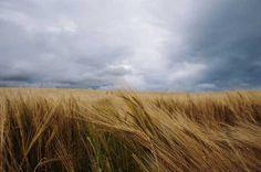 Landscape Photography by Chris Ozer #inspiration #photography #landscape
