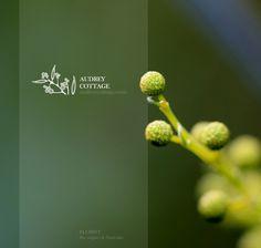 AUDREY COTTAGE. branding - Advision Design