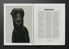 Four | BEYOND THE SCREEN #print #dog