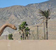 _CA+ __california ___Cabazon, dinosaur PHOTOGRAPHIE © [ catrin mackowski ]