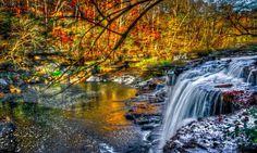 Forest Waterfall Blue Water Pc Full Hd Wallpaper – WallpapersBae
