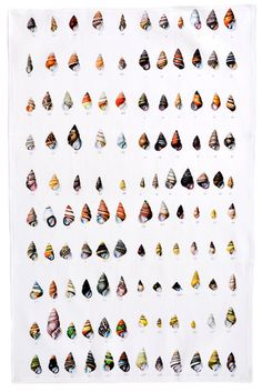 Shells Tea Towel #towel #pattern #shell #textille
