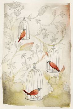 Janice Nadeau   Illustrations
