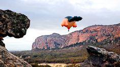 The Skywhale - Patricia Piccinini #australia