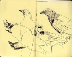 Donny Nguyen - BOOOOOOOM! - CREATE * INSPIRE * COMMUNITY * ART * DESIGN * MUSIC * FILM * PHOTO * PROJECTS #sketchbook #nguyen #donny #bird #crow #sketch