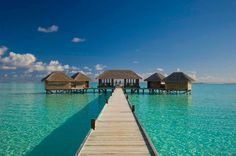 Artistic restaurant – inspiring view from underwater restaurant Ithaa #artistic #view #underwater #restaurant
