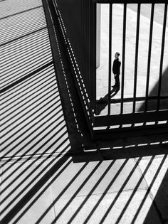 http://off-the-wall-b.tumblr.com/ #lines #white #railings #black #and
