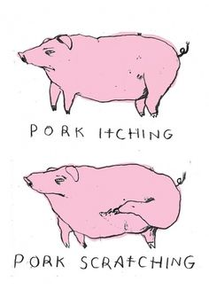 Pub Humour - Suzi Kemp #illustration #pigs #typography
