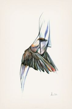 The Vanishing Bird - Kareena Zerefos #birds #illustration #graphite