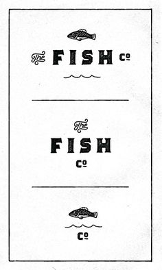 The_fish_co #fishtown #illustration #fish