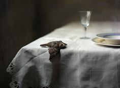 Still-life-with-bird-600x444.jpg (600×444) #photography