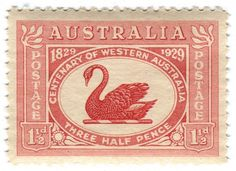 All sizes | Australia postage stamp: Centenary of Western Australia | Flickr - Photo Sharing! #stamp #swan #vintage #type #australia #typography