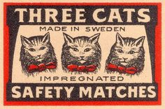Three Cats #type #design #vintage