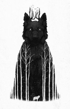 Black wolf. Mysterious. #forest #wolf