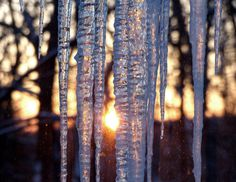 Frozen Sunrise #sun #water #woods #nature #season #icicle #ice #sunset #peaceful #winter