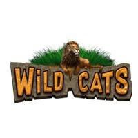Wild Cats   Prominentt Games
