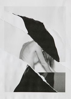 Ramon Haindl | PICDIT #collage #art