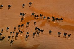 Desert Art by George Steinmetz