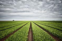 Marc Tule #inspiration #photography #landscape