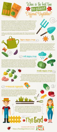 Handy Gardeners advice you when is the best time to plant different vegetables