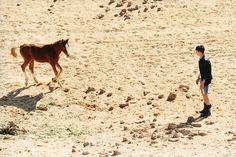 7_rjshaughnessy15.jpg (600×400) #horse #foal