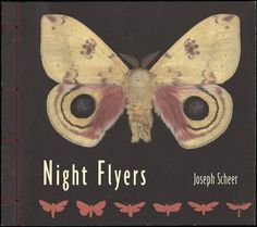 Night Flyers / Joseph Scheer #moth #print #bugs #book