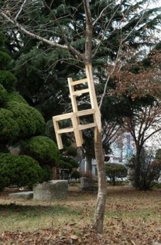 Instant Joy #tree #design #chair #art