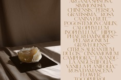 Wild Grace Natural Brand Identity | Trendland Online Magazine Curating the Web since 2006