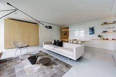 Lake Shore Drive Studio by Vladimir Radutny Architects