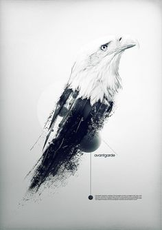 avantgarde on the Behance Network #art #poster #bird