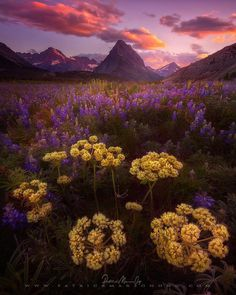Beautiful Nature Landscapes by Patrick Marson Ong