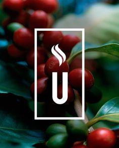 Union Yard on the Behance Network #union #tea #coffee #yard #norwich