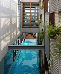 House in Australia Revolves Around a Stunning Swimming Pool - InteriorZine