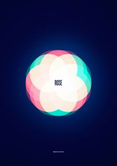 Andaur Studios / Everyday #spectre #rose #color #colors #poster