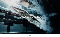 Swanson Studio Web Site on the Behance Network