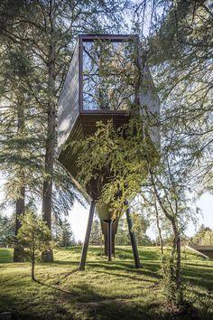 treesnakehouse-12 #architecture #house #tree